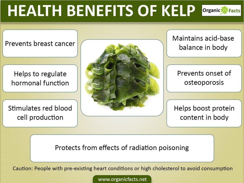 kelpinfo